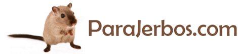 ParaJerbos.com